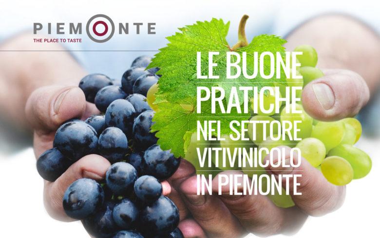 Le buone pratiche nel settore vitivinicolo